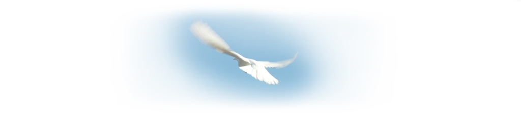 dove-of-peace2
